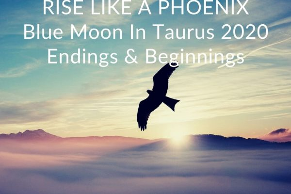 Blue Moon In Taurus 2020